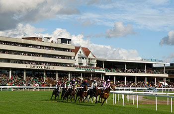 This image is of horses racing at Haydock Park in Birkenhead.