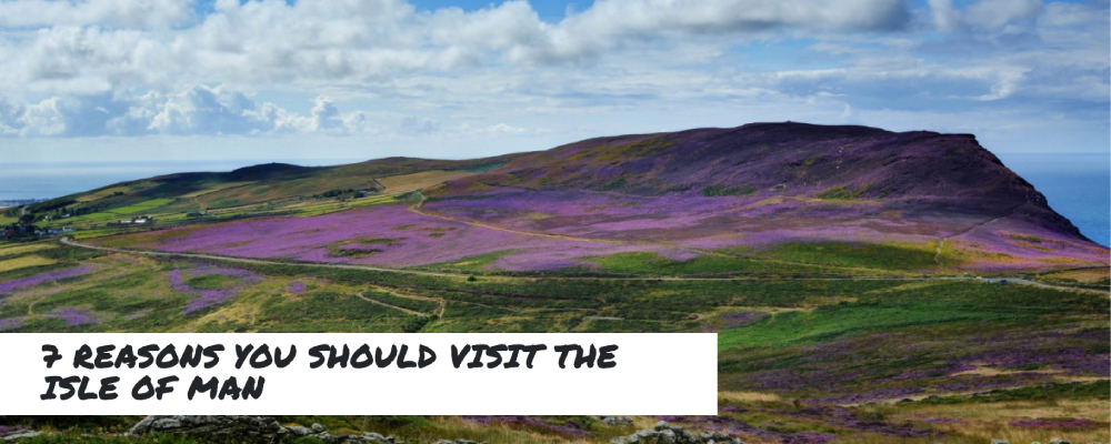 A beautiful vista - with fields and hills covered in colourful heather