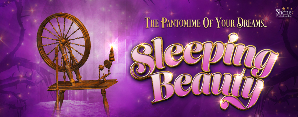 Sleeping Beuty Pantomime Artwork